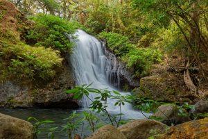 Waterfall Costa Rica Water  - kiwibu / Pixabay